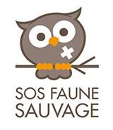 logososfaunesauvage